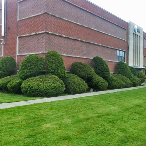 Grounds maintenance for commercial property in New Paltz, NY.